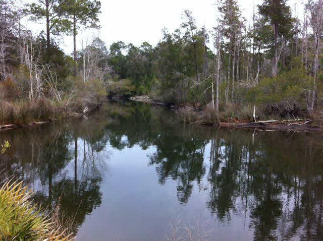 0 Soldier Creek Rd, Lillian, AL 36549 (MLS #248606) :: Gulf Coast Experts Real Estate Team