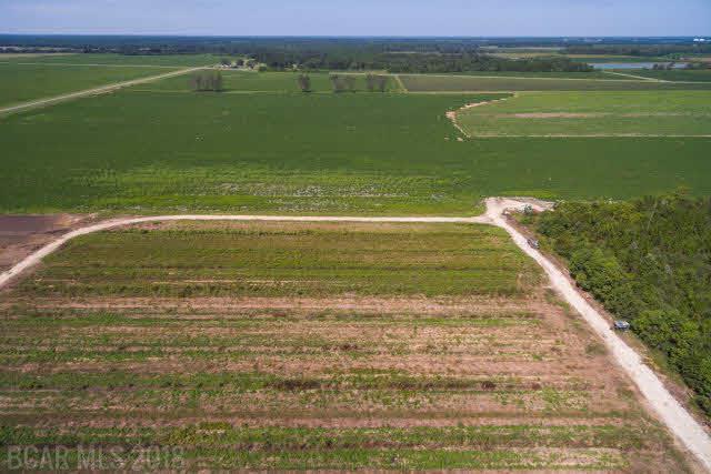 0 Lewis Rd, Jay, FL 32570 (MLS #249445) :: Gulf Coast Experts Real Estate Team