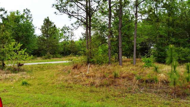 0 Dragoon Court, Summerdale, AL 36580 (MLS #249942) :: Gulf Coast Experts Real Estate Team