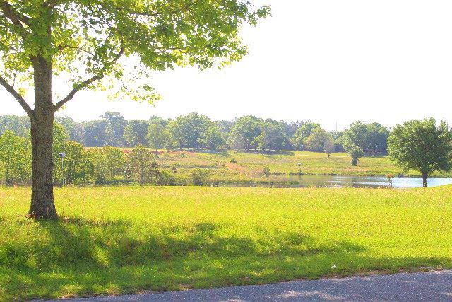 0 Balsam Creek Drive, Elberta, AL 36530 (MLS #252256) :: Gulf Coast Experts Real Estate Team