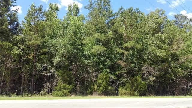 0 Us Highway 29, East Brewton, AL 36426 (MLS #253957) :: Gulf Coast Experts Real Estate Team