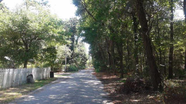 0 Council Ln, Gulf Shores, AL 36542 (MLS #254949) :: Gulf Coast Experts Real Estate Team