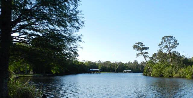 9600 Clarke Ridge Road, Foley, AL 36535 (MLS #256557) :: Gulf Coast Experts Real Estate Team