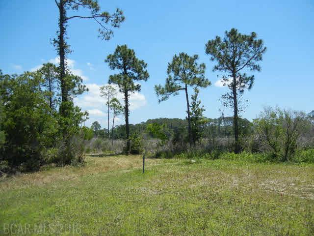 4105 Plash Road, Gulf Shores, AL 36542 (MLS #257011) :: Gulf Coast Experts Real Estate Team