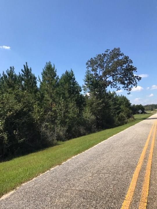 0 Old Highway 31, Brewton, AL 36426 (MLS #260841) :: Gulf Coast Experts Real Estate Team