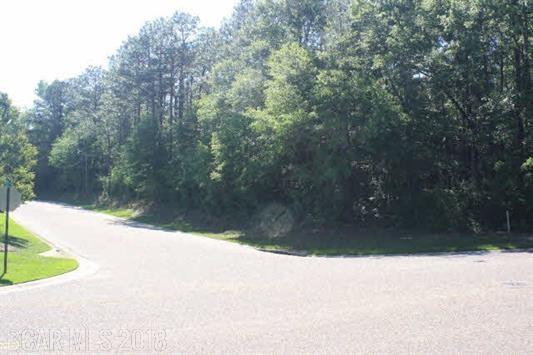 0 Stanton Road, Daphne, AL 36526 (MLS #263303) :: Gulf Coast Experts Real Estate Team