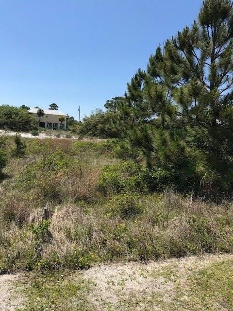 465 Breakers Lane, Gulf Shores, AL 36542 (MLS #268677) :: Elite Real Estate Solutions
