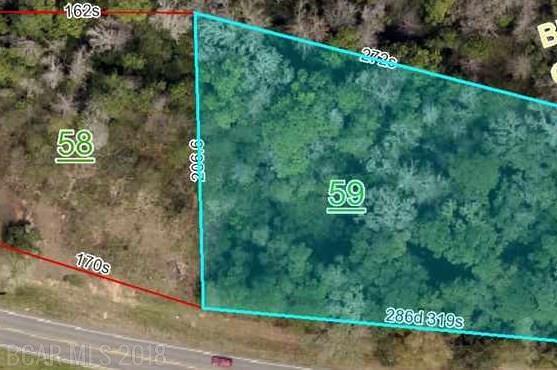 10251 Highway 98, Fairhope, AL 36532 (MLS #270062) :: Elite Real Estate Solutions