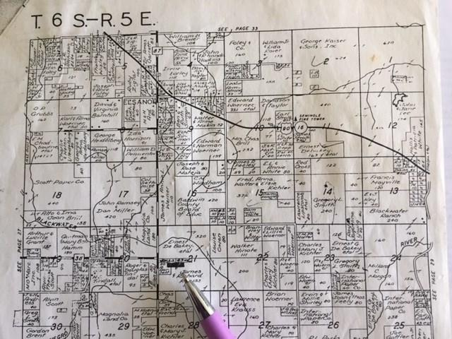 County Road 87, Elberta, AL 36530 (MLS #270835) :: Elite Real Estate Solutions