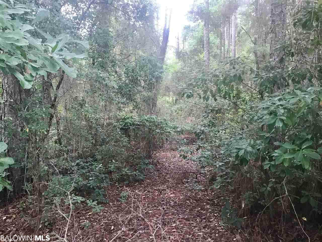 124 Meadow Wood Loop - Photo 1