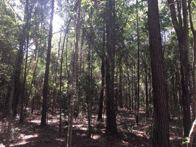 0 County Road 24, Fairhope, AL 36532 (MLS #274754) :: Gulf Coast Experts Real Estate Team