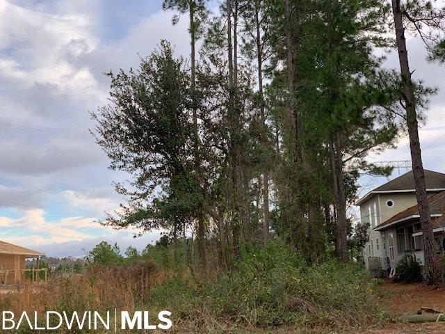 316 W Canal Drive, Gulf Shores, AL 36542 (MLS #278025) :: Coldwell Banker Coastal Realty