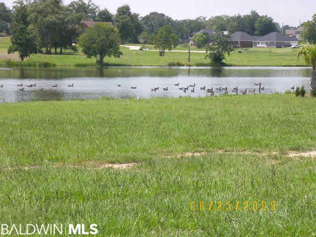 0 Edgewater Circle, Loxley, AL 36551 (MLS #278737) :: Elite Real Estate Solutions