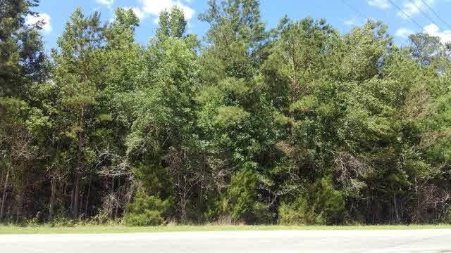 0 Us Highway 29, East Brewton, AL 36426 (MLS #287112) :: Ashurst & Niemeyer Real Estate