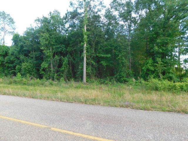 61200 Blk Milstead Road, Atmore, AL 36502 (MLS #298191) :: Gulf Coast Experts Real Estate Team