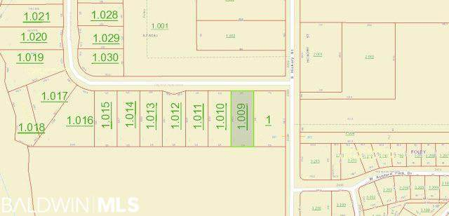 Lot 2 Fielding Park Dr, Foley, AL 36535 (MLS #298494) :: Dodson Real Estate Group