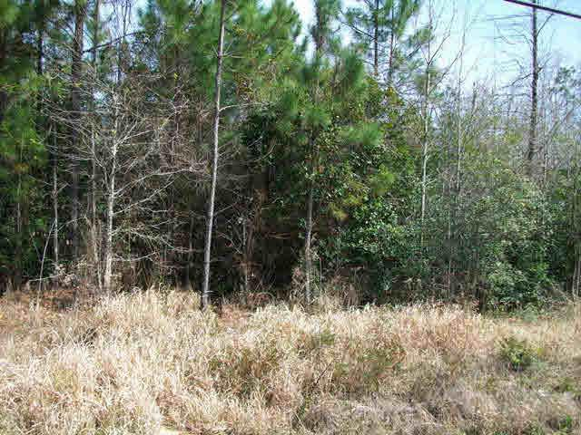 61 Highway 45, Eight Mile, AL 36613 (MLS #172816) :: Gulf Coast Experts Real Estate Team