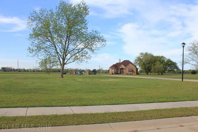 18685 NO Cordelia Lane, Foley, AL 36535 (MLS #197196) :: Gulf Coast Experts Real Estate Team