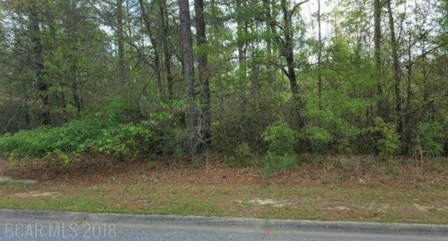 0 Juniper Creek Dr, Brewton, AL 36426 (MLS #251454) :: Gulf Coast Experts Real Estate Team
