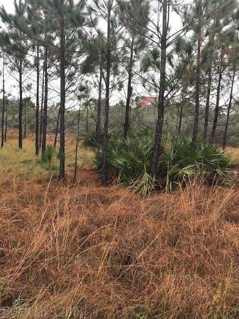 Driftwood Dr, Gulf Shores, AL 36542 (MLS #263485) :: Gulf Coast Experts Real Estate Team