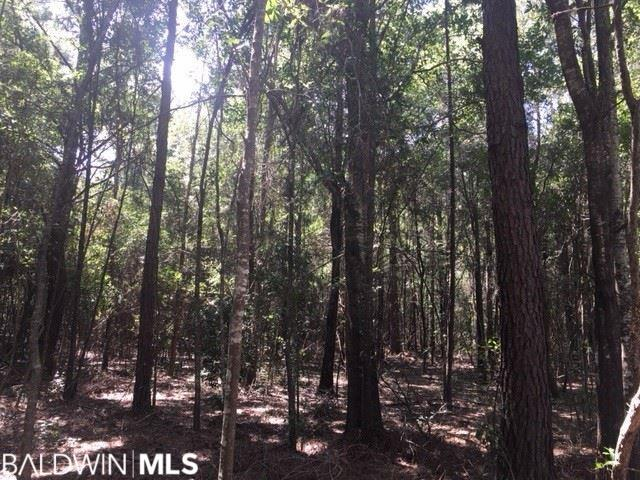 0 County Road 24, Fairhope, AL 36532 (MLS #274754) :: The Kim and Brian Team at RE/MAX Paradise