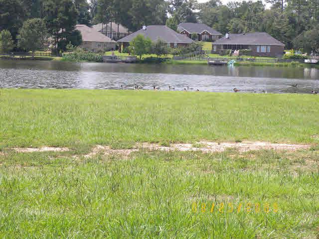 0 Edgewater Circle, Loxley, AL 36551 (MLS #278732) :: Elite Real Estate Solutions
