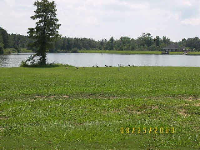 0 Edgewater Circle, Loxley, AL 36551 (MLS #278735) :: Elite Real Estate Solutions