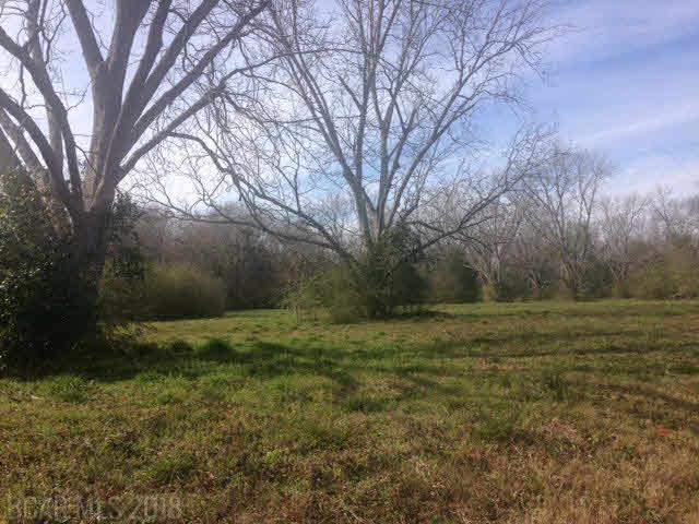 24711 Highway 59, Robertsdale, AL 36567 (MLS #197813) :: Jason Will Real Estate