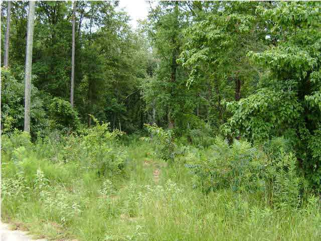 0 Timber Creek Court, Axis, AL 36505 (MLS #206277) :: ResortQuest Real Estate