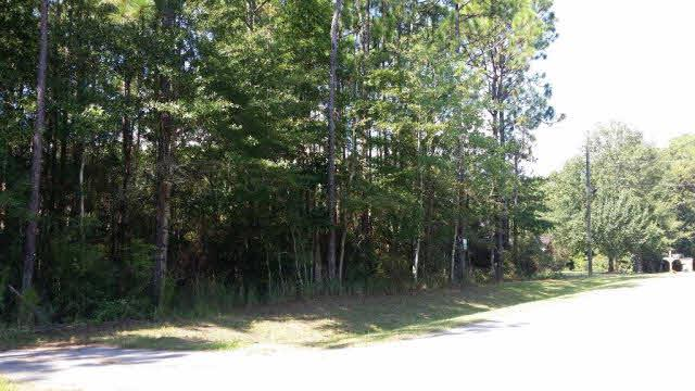 0 Riverview Road, Coden, AL 36523 (MLS #243795) :: Gulf Coast Experts Real Estate Team
