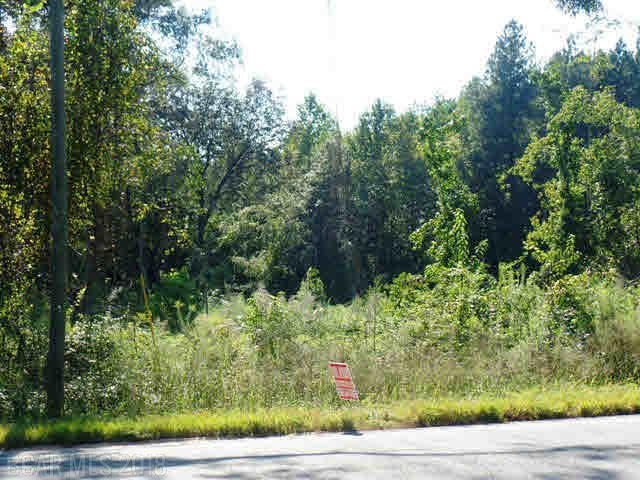 24800 Highway 41, Brewton, AL 36426 (MLS #244103) :: Gulf Coast Experts Real Estate Team