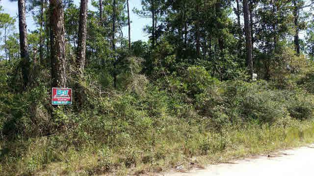 0 Pine Top Rd, Coden, AL 36523 (MLS #244118) :: Gulf Coast Experts Real Estate Team