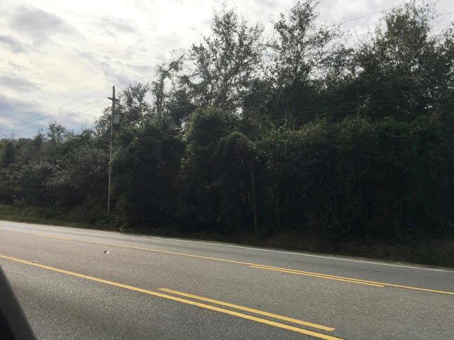 0 Highway 181, Fairhope, AL 36532 (MLS #247077) :: Elite Real Estate Solutions
