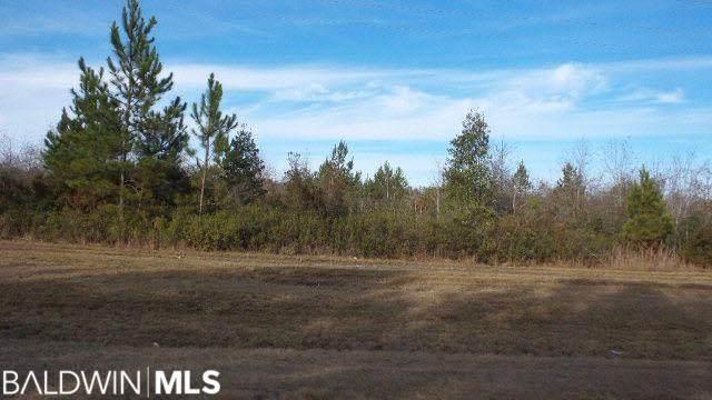 16.18-2 Highway 182, Jay, FL 32565 (MLS #249431) :: Dodson Real Estate Group