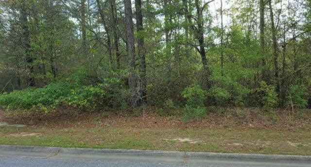 0 Juniper Creek Dr, Brewton, AL 36426 (MLS #251454) :: Elite Real Estate Solutions
