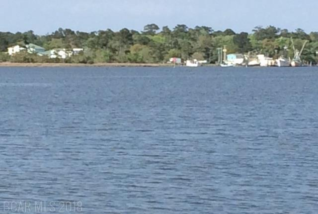 4500 Plash Road, Gulf Shores, AL 36542 (MLS #267390) :: Gulf Coast Experts Real Estate Team
