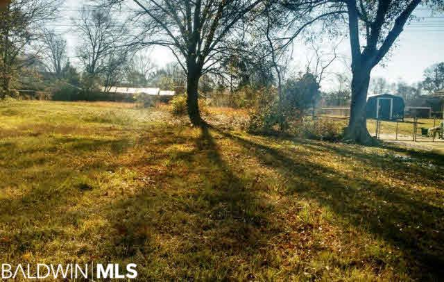 138 Courtaulds Ave, Saraland, AL 36571 (MLS #237479) :: Gulf Coast Experts Real Estate Team