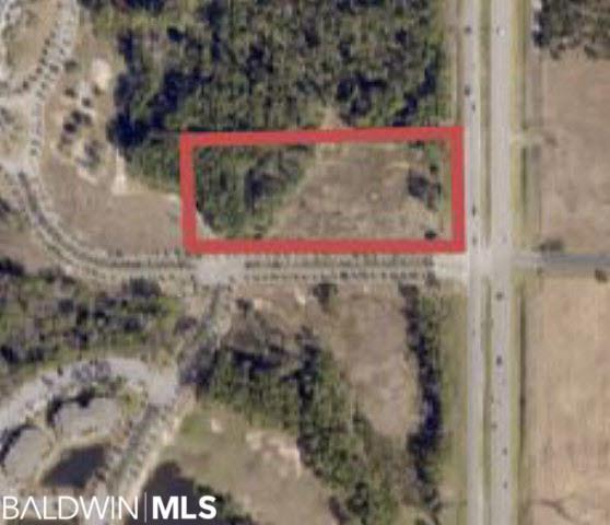 0 Highway 59, Gulf Shores, AL 36542 (MLS #253698) :: Gulf Coast Experts Real Estate Team
