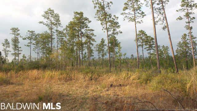 0 Lewis Rd, Jay, FL 32570 (MLS #256299) :: Elite Real Estate Solutions