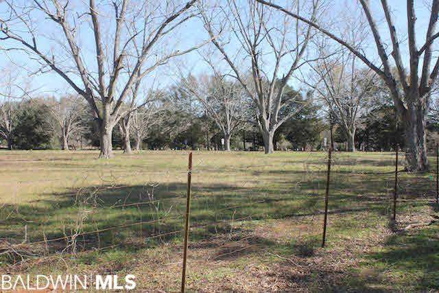 98 County Road 55, Foley, AL 36535 (MLS #235242) :: Elite Real Estate Solutions