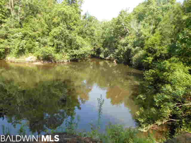 18735 S East River Road, Silverhill, AL 36576 (MLS #242017) :: Dodson Real Estate Group