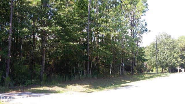 0 Riverview Road - Photo 1