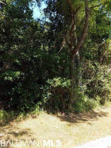 0 Marguerite Dr, Coden, AL 36523 (MLS #243780) :: Alabama Coastal Living