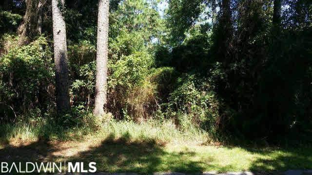 0 Marguerite Dr, Coden, AL 36523 (MLS #244087) :: Dodson Real Estate Group