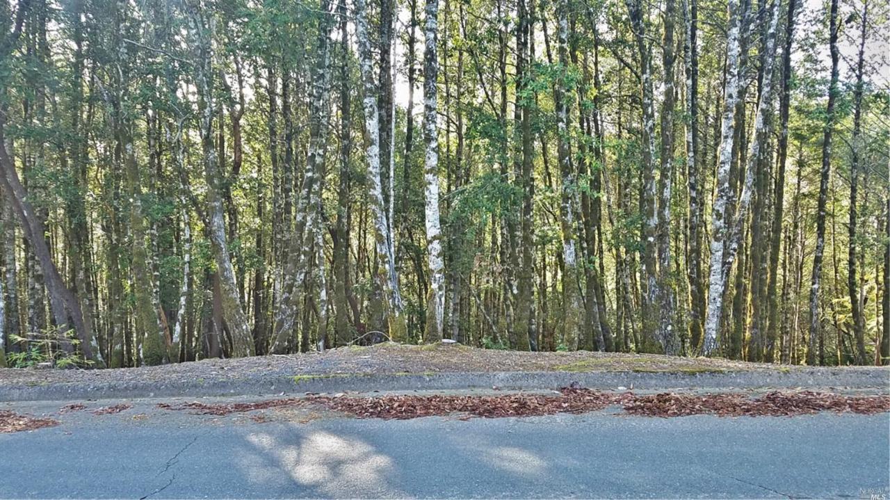 2235 Goose Road - Photo 1