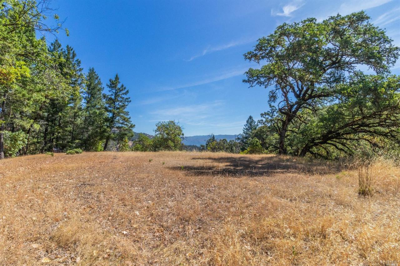 4650 Long Valley Ranch Road - Photo 1