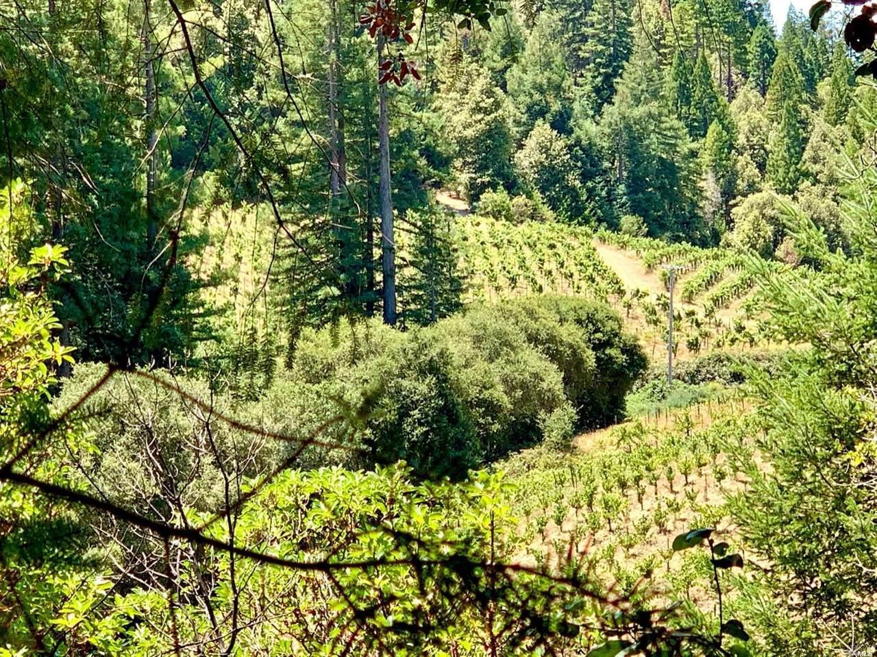 11500 Mays Canyon Road - Photo 1