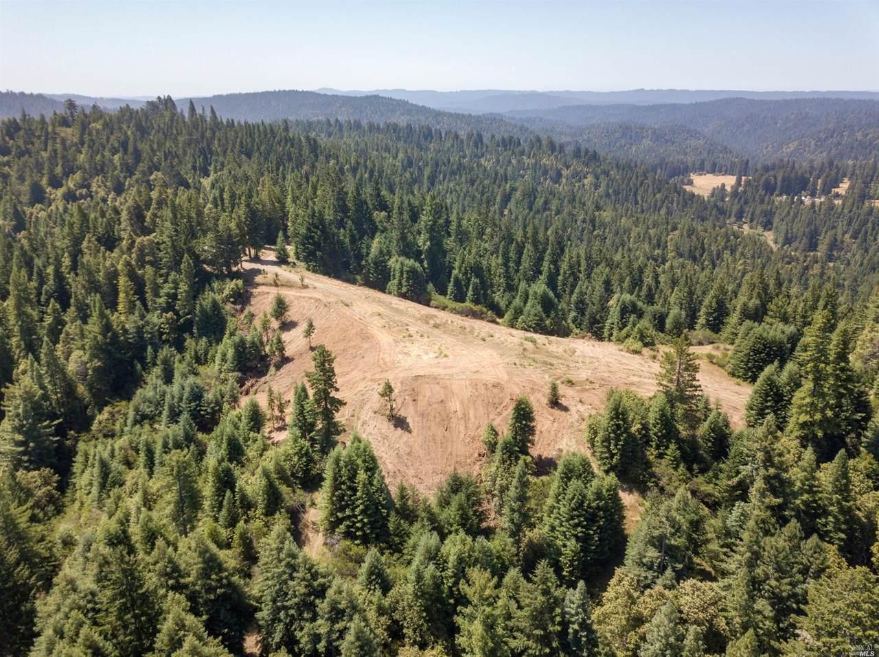 5801 Flynn Creek Road - Photo 1