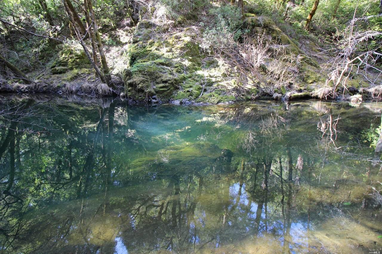21470 Orr Springs Road - Photo 1