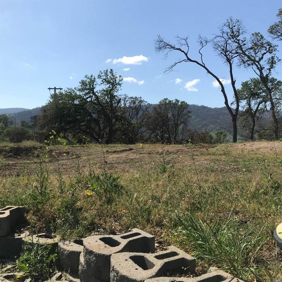3745 Wild Oak Trail - Photo 1